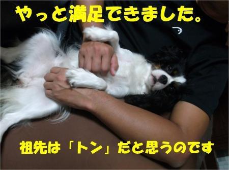09_convert_20120702180133[1]