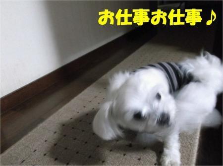01_convert_20120703175918[1]