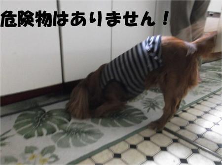 02_convert_20120703175945[1]