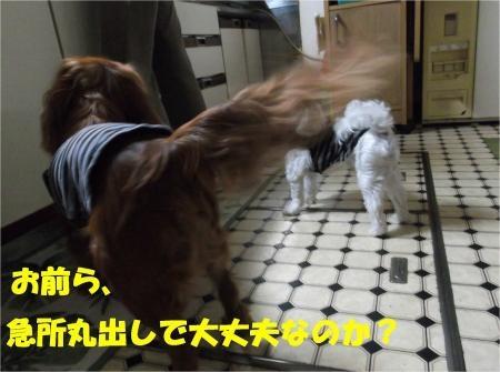 04_convert_20120703180041[1]
