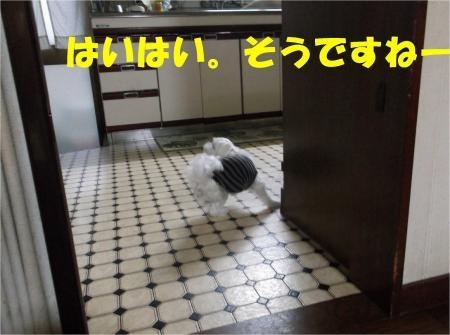 05_convert_20120703180111[1]