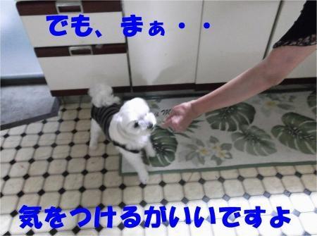 06_convert_20120703180141[1]