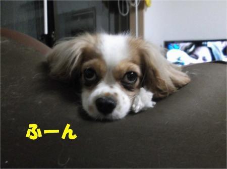 01_convert_20120704174532[1]