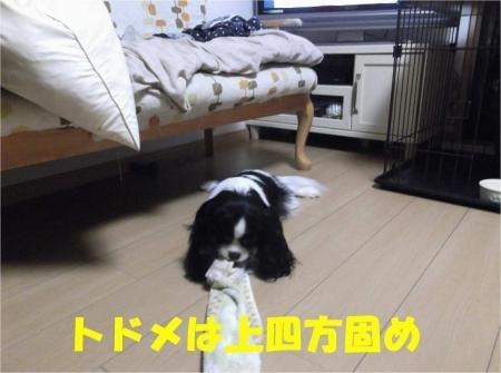 07_convert_20120704174834[1]