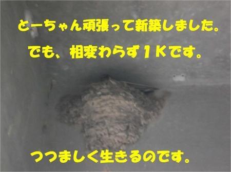 02_convert_20120705181559[1]