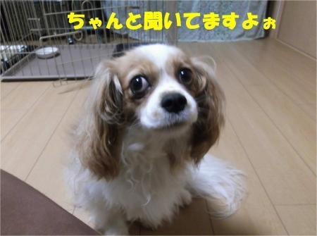 04_convert_20120705181657[1]