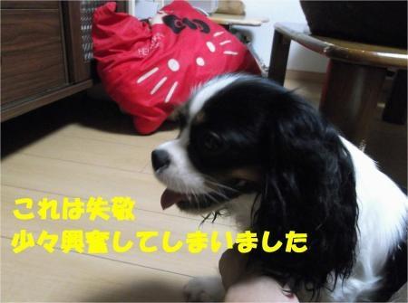06_convert_20120705181753[1]