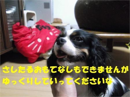 08_convert_20120705181854[1]
