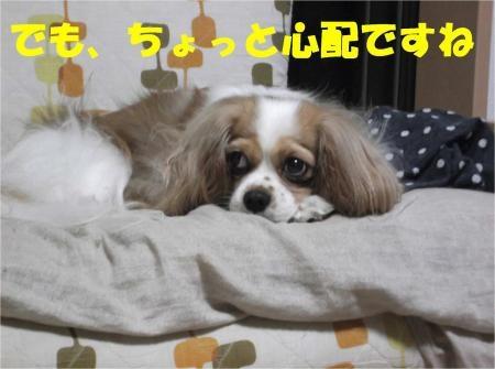 010_convert_20120705181955[1]