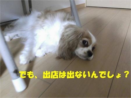 04_convert_20120706194048[1]