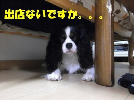 07_convert_20120706194215[1]