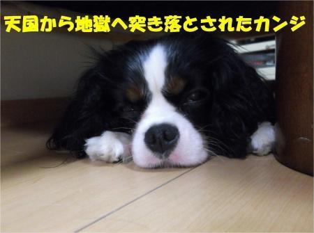 08_convert_20120706194245[1]