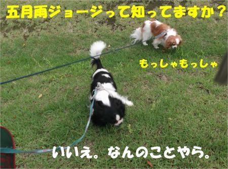 01_convert_20120709175323[1]