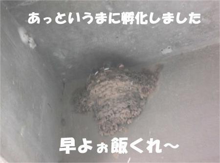 00_convert_20120711180323[1]