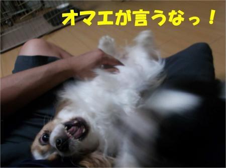 02_convert_20120711180417[1]