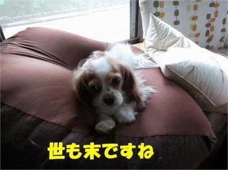 02-2_convert_20120712175109[1]
