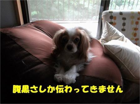 02_convert_20120712175139[1]