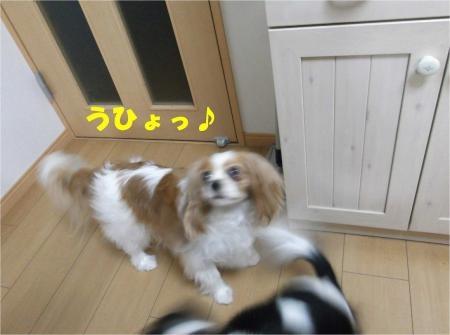 02_convert_20120713172056[1]