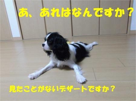 06_convert_20120713172222[1]