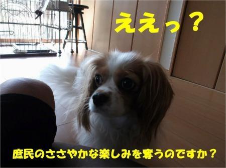 03_convert_20120717180030[1]