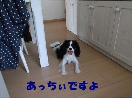 04_convert_20120717180056[1]