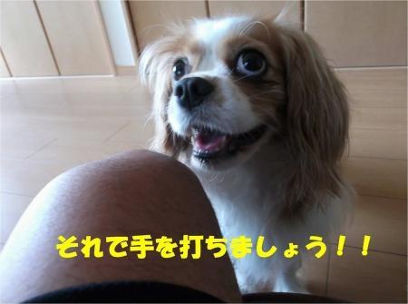 06_convert_20120717180146[1]