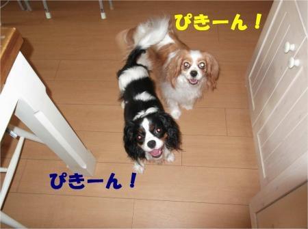 07_convert_20120717180213[1]