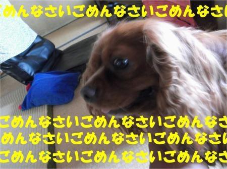 01_convert_20120718180442[1]
