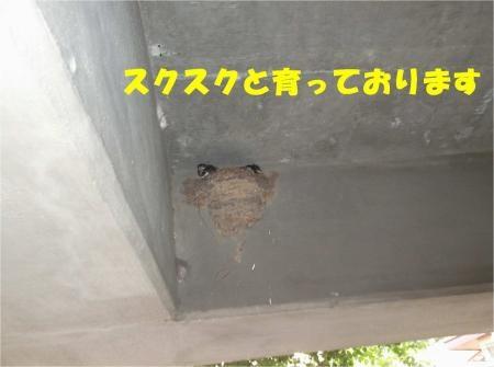 05_convert_20120718180637[1]