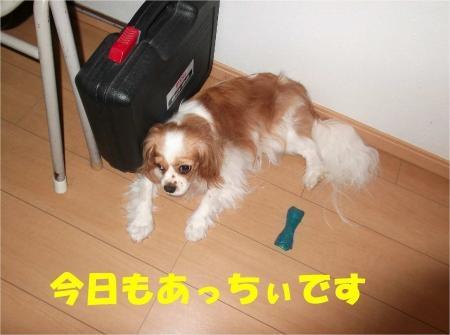 01_convert_20120719180919[1]