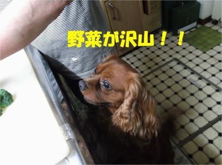03_convert_20120719181017[1]