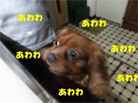 04_convert_20120719181045[1]