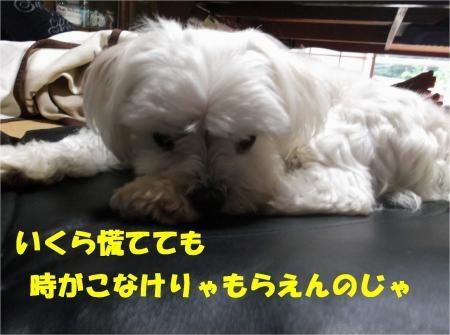 07_convert_20120719181140[1]