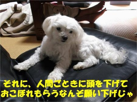 08_convert_20120719181212[1]