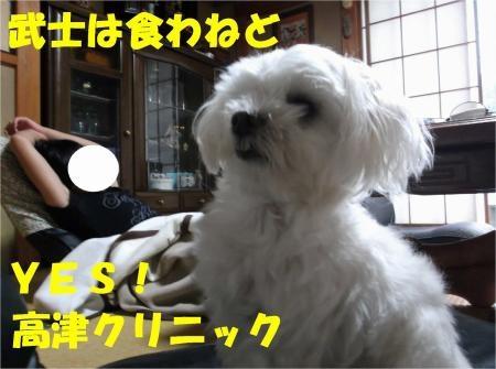 010_convert_20120719181242[1]