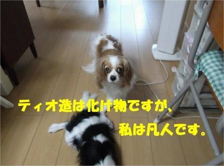 04_convert_20120720174741[1]