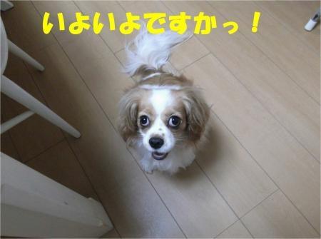 01_convert_20120724215920[1]