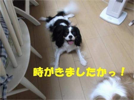 02_convert_20120724215955[1]