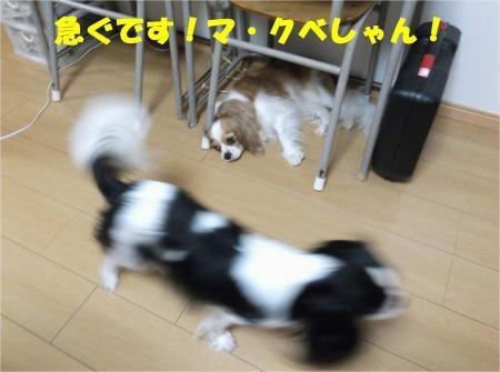 0_convert_20120725174905[1]