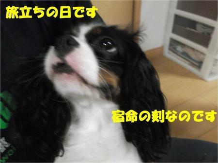 02_convert_20120725175009[1]