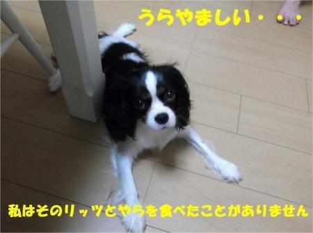 05_convert_20120726183112[1]