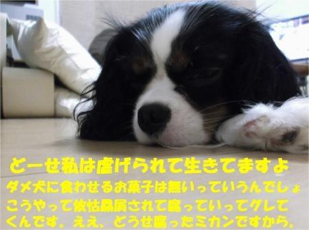 07_convert_20120726183207[1]