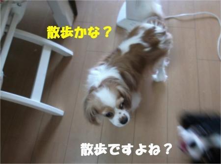 02_convert_20120727175422[1]