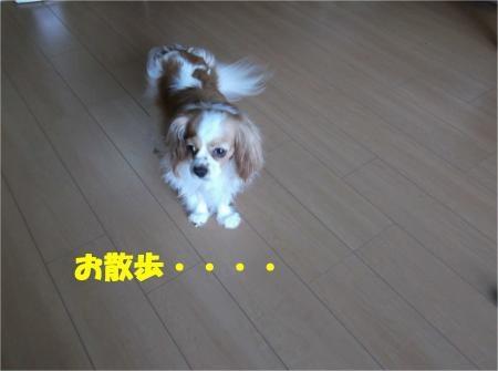 03_convert_20120727175519[1]