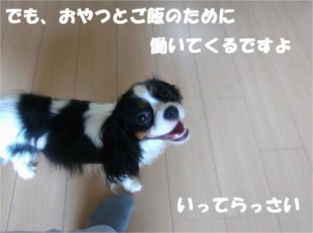 06_convert_20120727175615[1]