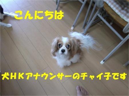 01-2_convert_20120730180242[1]