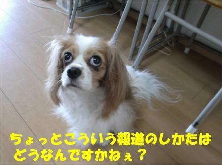 03_convert_20120730180339[1]