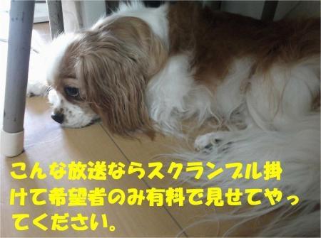 06_convert_20120730180508[1]