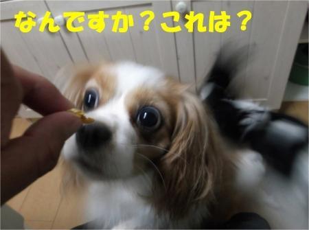 07_convert_20120801175019[1]