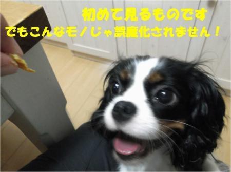 08_convert_20120801175045[1]